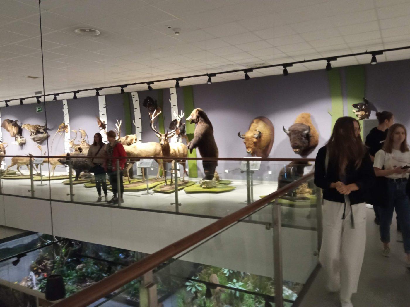 Zdjęcie z galerii Fascynujacy świat zwierząt w CEP UJ